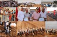 بالصور : اختتام مهرجان التبوريدة بجماعة أولاد ستوت بحضور جماهيري غفير