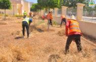 المجهودات متواصلة لحماية المواطنين من الحشرات و الزواحف السامة بإزالة الأعشاب الضارة